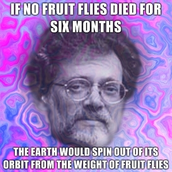 if-no-fruit-flies-died-for-six-months